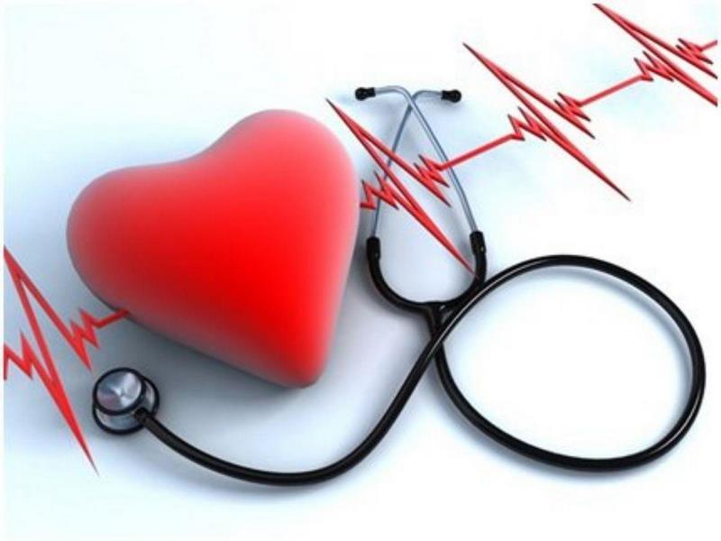 Nấm linh chi có tác dụng vượt trội trong điều hòa huyết áp, ngăn ngừa bệnh lý tim mạch.