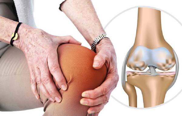 Hình: Đau nhức xương khớp là bệnh lý phổ biến ở người cao tuổi